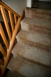 4 Easy Tips for Preventing Mold and Mildew in Your Home