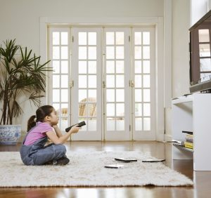 4 Key Points About Mold in Your Home